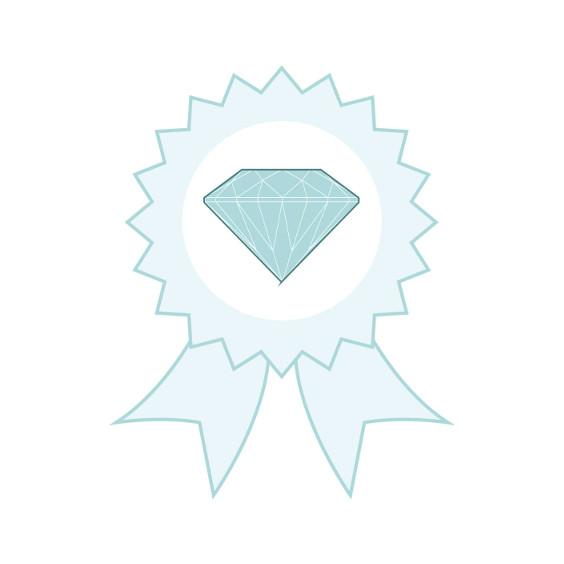 image certificat authenticité langlois